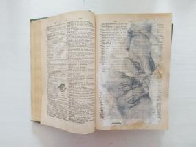 diccionario 1 - amor